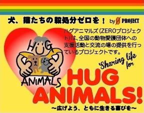 HUG ANIMALS